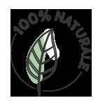 100-NATURALE-ICON